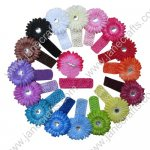 12pcs Daisy and Headbands Sets